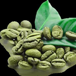 قهوه سبز 46844784867487